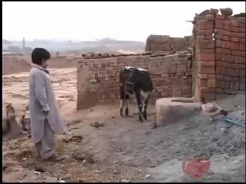 new funny pothwari drama clip youtu.be DHCJm5qm4Tk