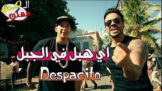 المش ممكن | اغنية ديسباسيتو لو كانت مصرية .؟!