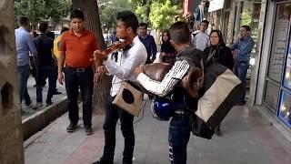 ویولن نواز خیابانی، کرمانشاه .Violinist on the Kermanshah street
