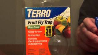 How to Get Rid of Fruit Flies - Fruit Fly Trap