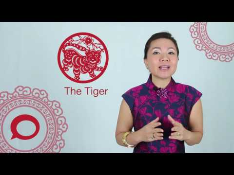 The Tiger 2017 Chinese Zodiac Predictions With Jessie Lee The Coverage