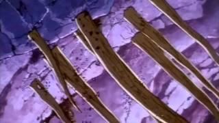 Flash Gordon - Episodio 04 - Salvare la Terra