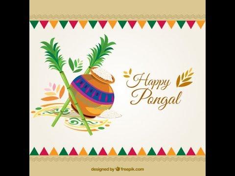 #Happy Pongal Wishes #Whatsapp Status Video