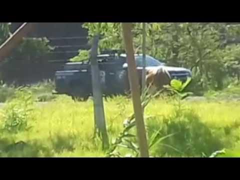 Vehículo de la FOPE en el cerro Ñemby