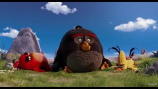 Comedy scene from angry bird in hindi