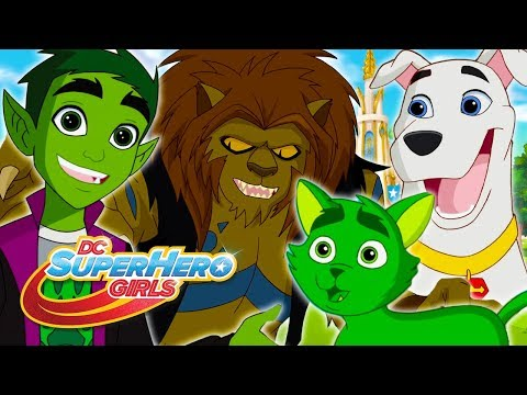 Xxx Mp4 Lions And Tigers And Beast Boy Oh My DC Super Hero Girls 3gp Sex