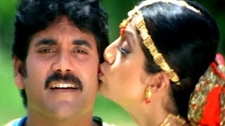 Hai Hai Nayakaa Attamma Koduka Video Song - Azad Movie - Nagarjuna, Soundarya, Shilpa Shetty