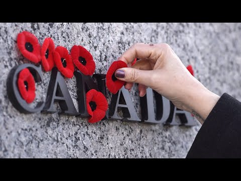 Remembrance Day 2020 CBC News Special