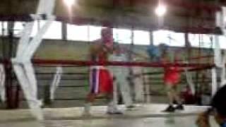 pascani box bucuros iasi sibiu 2010 3 octombrie 2010 fight kill sport