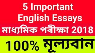 StudyAssam HSLC SEBA ASSAM English 5 Important Essays!