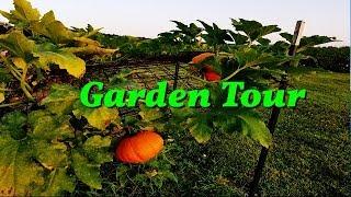 Meet My Beautifull Plants | INDIAN VEGETABLE GARDEN TOUR 2018 | Indian NRI Mom || simplify home