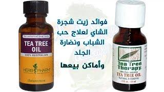 فوائد زيت شجرة الشاي لعلاج حب الشباب والأمراض الجلدية | أين يباع زيت شجرة الشاي