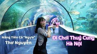 Đi Chơi Giữa Lòng Đại Dương Ở Thuỷ Cung Time City Hà Nội