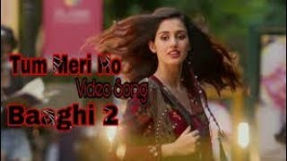 O Saathi | Atif Aslam | Baaghi 2 | Full Video Song