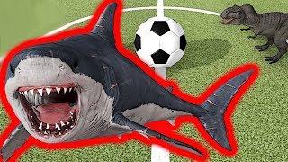 Dev Köpekbalığı MEGALODON Futbol Maçında