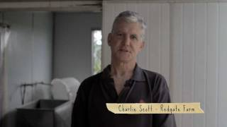 THE QUAIL FARMER - Charlie Scott from Redgate Farm