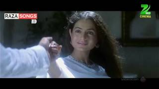 Humko Tumse Pyar Hai (((DJ Jhankar))) (Raza HD Songs)