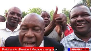 Politicians on President Mugabe's resignation