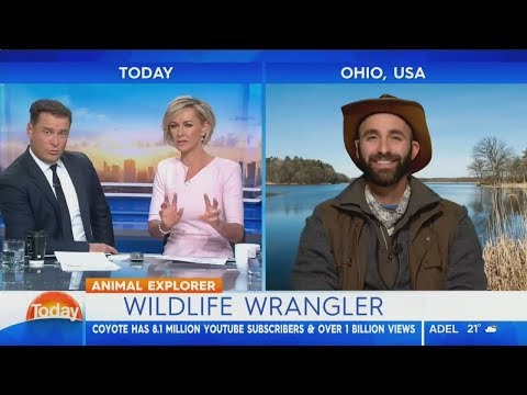 Coyote Peterson Karl Stefanovic