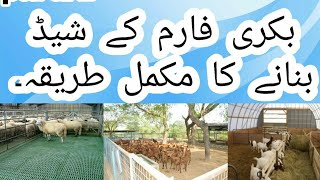 How to make shed for goat farm ?