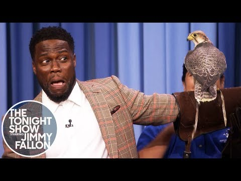 Kevin Hart Is Terrified of Robert Irwin's Animals Video Clip