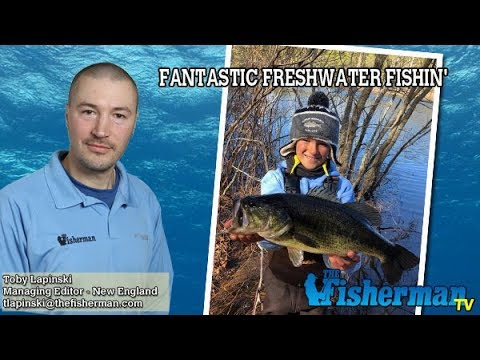 April 26, 2018 New England Fishing Report with Toby Lapinski