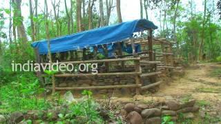 Graveyard In Naga Village  Nagaland
