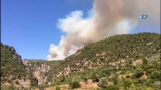 Alevlerin Yaklaştığı Zeytinköy Tahliye Ediliyor