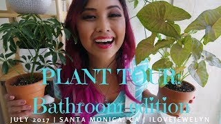 PLANT TOUR: Bathroom edition | July 2017 | ILOVEJEWELYN