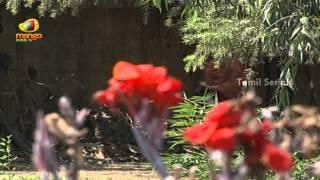 Panam - Episode 65