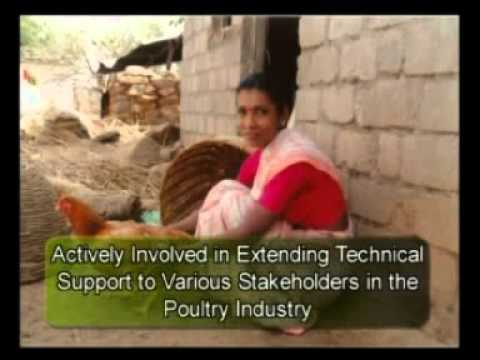 Project Directorate on Poultry, Hyderabad telegu