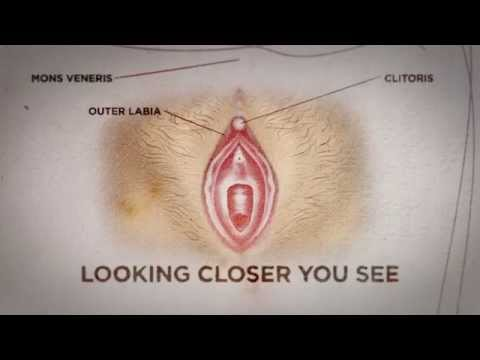 Can you see if a woman is a virgin? Here's the truth - Nyheterna (TV4)