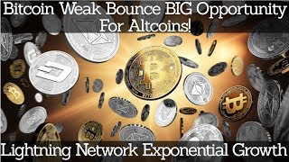 Crypto News | Bitcoin Weak Bounce BIG Opportunity For Altcoins! Lightning Network Exponential Growth