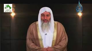 عقيدتنا في القضاء والقدر - الشيخ مصطفى العدوي