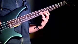 Californication - Bass Cover