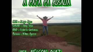 NELSON DIAZ a pata pa Rosalia