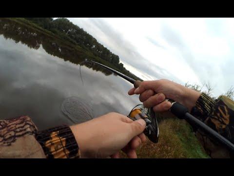 рыбалка в полтавской области на щуку видео