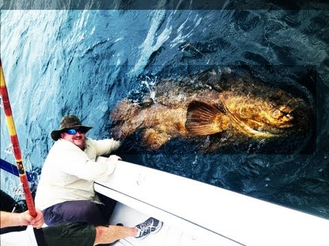 BIG MAN CATCHES BIG FISH
