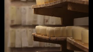 Trappist Monks Cheese, Washed Rind Cheese France. Preview for Cheese Slices/ Cheese Chasers Season 6