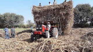 New Holland Fiat Tractor with Heavy Load Sugarcane Trolley