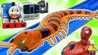 きかんしゃトーマス おもちゃ 事故して巨大ムカデに襲われる!電車と機関車も線路でじこはおこるさ★踏切 プラレール トミカ 昆虫 虫 Go Go Thomas & Friends たまごMammy
