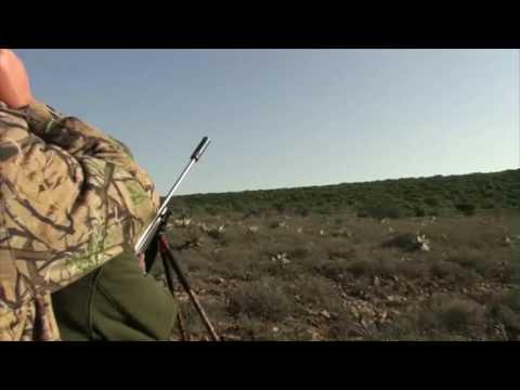 Khalid Cape Kudu Hunt