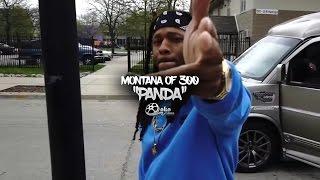 Montana of 300 -