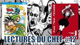 DRAGON BALL SD-FORTRESS OF APOCALYPSE-MAGICAL GIRL SITE - LECTURES DU CHEF 12