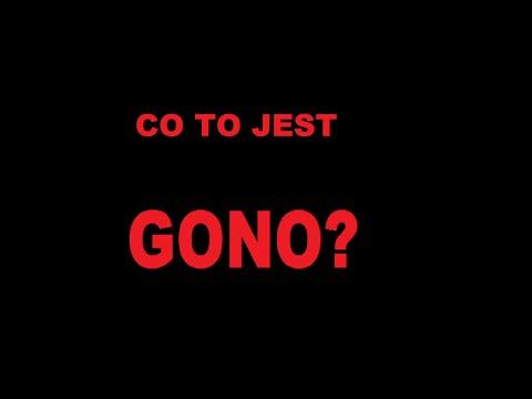 CO TO JEST GONO