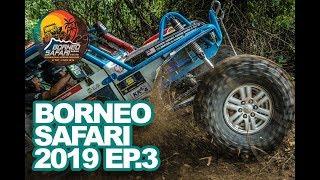 BORNEO SAFARI 2019 - EPISODE 3
