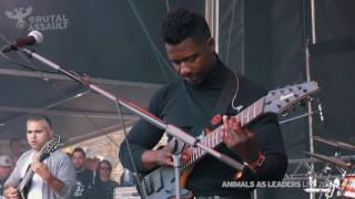 Brutal Assault 21 - Animals As Leaders (live) 2016