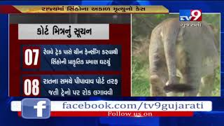 Amix curie submits report in Gujarat HC over untimely death of lions| Tv9News