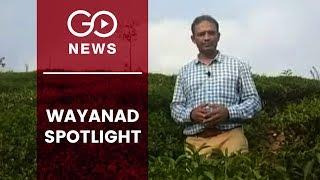 Wayanad in Spotlight