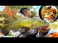 Download Video Catch and Cook Shrimp Adventure Kayak Fishing Murray Cod EP.404 3GP MP4 FLV